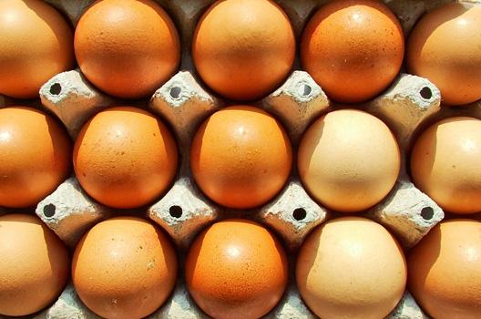 Skorupka jajka – naturalne źródło wapnia